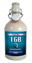 1 GB = EIN GROSSES BIER = Das Download Gamer Bier in der 0,75 Liter Tonflasche mit edlem Pils